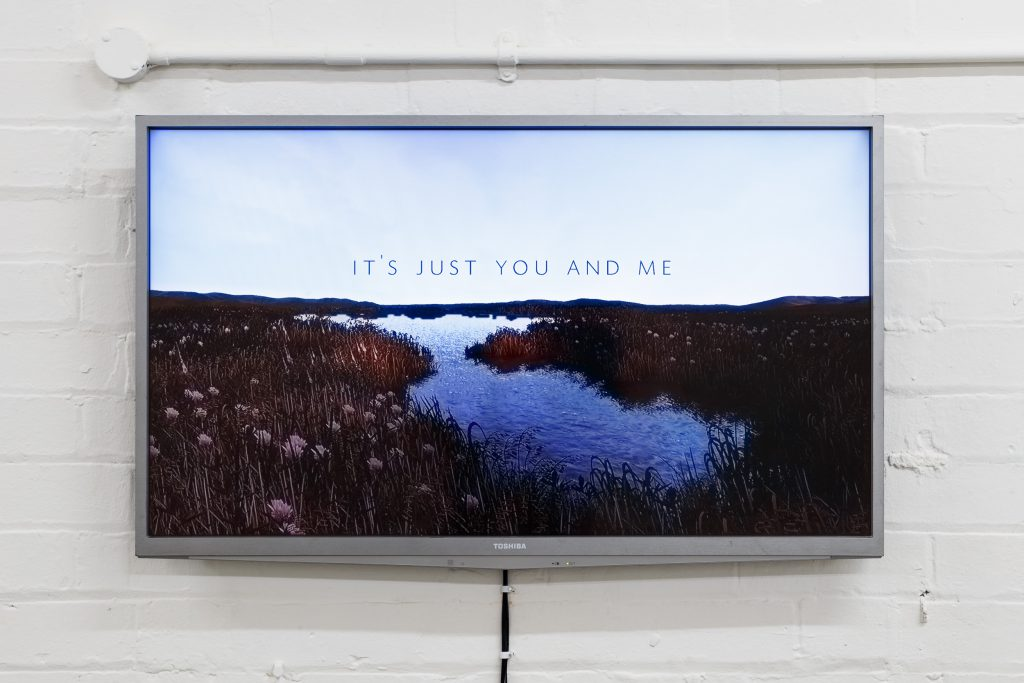 ESP - Steppes, Eastside Projects at Two Queens Art Gallery, Leicester 2017 -  Emilie Atkinson, Leah Carless, Alice Gale-Feeny, Georgie Grace and Brian J Morrison